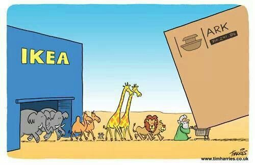 Image result for noah's ark cartoons pictures