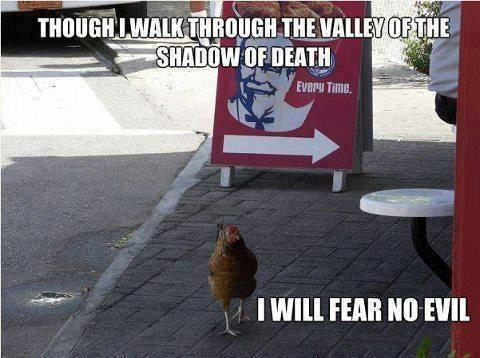 Psalm 23 funny 1