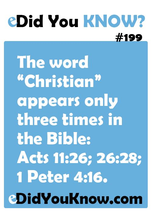Did you know these 12 amazing facts about the Bible? | Christian ...