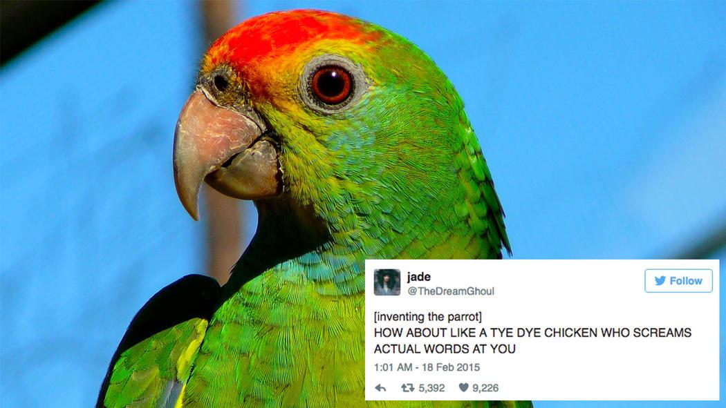 god-created-animals-parrot