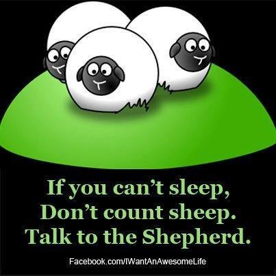 Sheep in the Bible 8 sheep and the bible 12 ridiculous pictures christian funny
